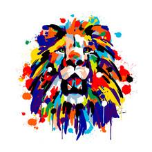 Lion's Face, Savannah Animals,...