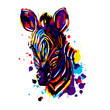 canvas print picture - Zebra face color brushstroke, African animals pop art, vector , Zebra head