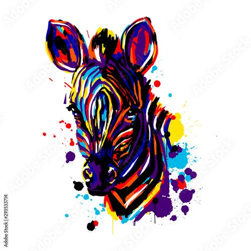 Zebra face color brushstroke, African animals pop art, vector , Zebra head