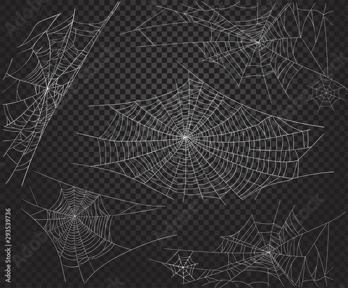 Canvastavla Halloween net ans spiders silhouettes