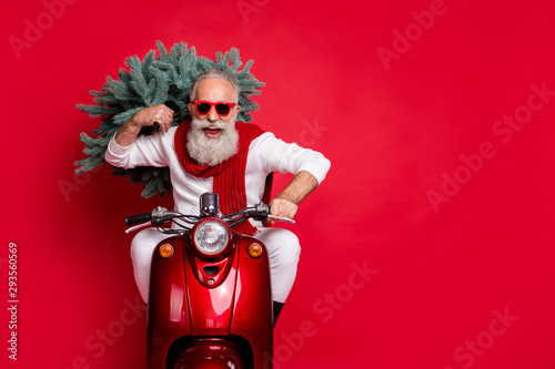 Fotografía  Portrait of cheerful pensioner carrying fir tree having eyeglasses eyewear drive