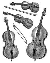 Vintage Engraving Of Violins