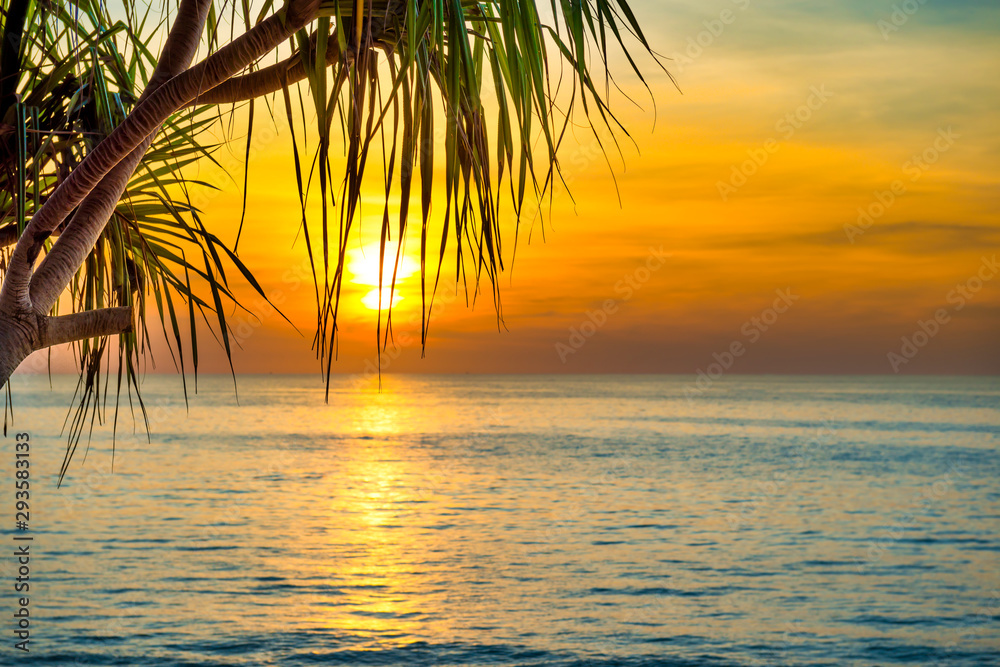 Fototapeta Beautiful landscape with sunset at tropical beach with palm trees