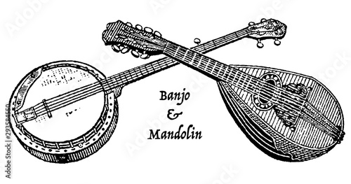 Vintage engraving of a banjo and mandolin Wallpaper Mural