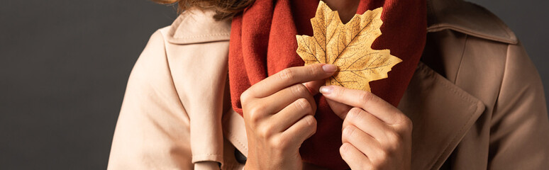 panoramic shot of woman in trench coat holding golden maple leaf on black background