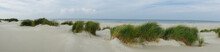 Panorama Of The Grassy Dunes O...