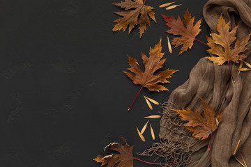 Brown scarf with autumn fallen leaves on black background