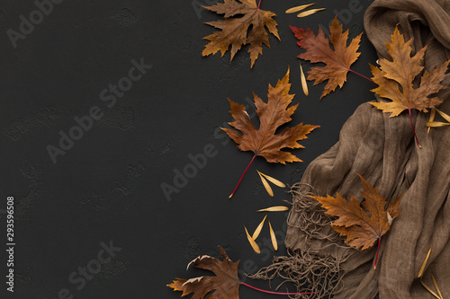 Fotografija Brown scarf with autumn fallen leaves on black background