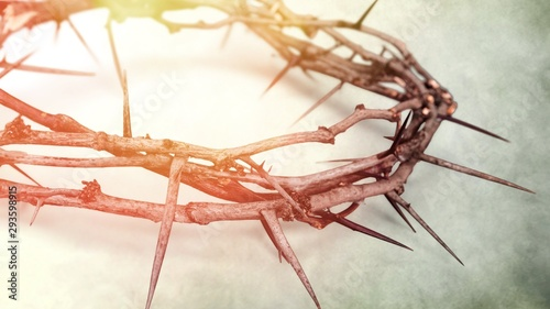 Foto Closeup of a Crown of Thorns