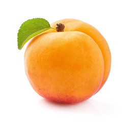 One apricot with leaf in closeup