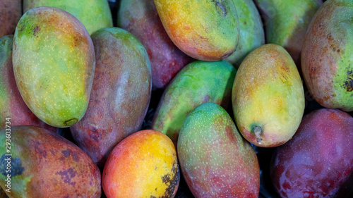 Photo Delicious mangoes, Tommy Atkins variety, with a sumptuous exotic flavor, high nu