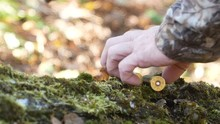 The Hunter Takes A Gun And Cartridges Lying On An Old Log. On The Log Are Old Leaves And Moss.