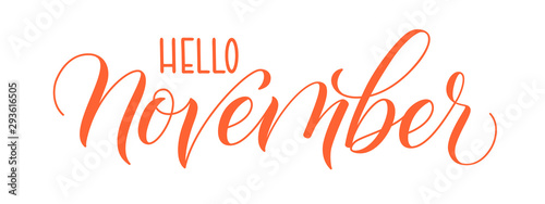 Modern brush calligraphy Hello November isotated on a white background. Vector illustration.