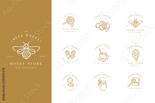 Fotografija Vector set illustartion logos and design templates or badges