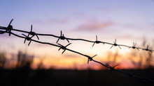 Black Silhouette Of Barbed Wir...