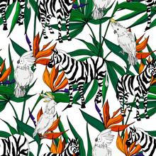 Vector Exotic Zebra Print Wild...