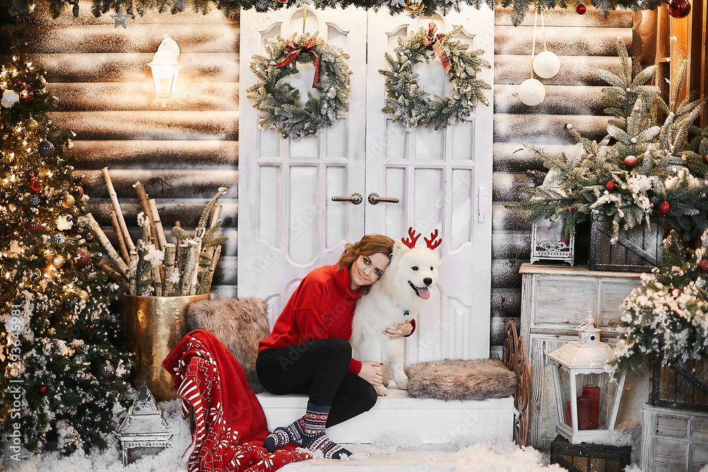 Fototapeta Happy girl in red new year sweater and Scandinavian socks, sits on the stairs and hugging cute white Samoyed dog with red deer horns. Concept of Christmas decorations.