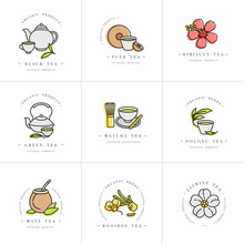 Vector Set Design Colorful Templates Logo And Emblems - Organic Herbs And Teas . Different Teas Icon. Logos In Trendy Linear Style Isolated On White Background.