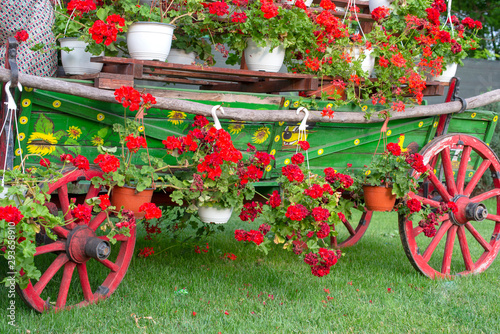 Ornamental cart with flowers on it