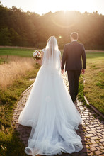 Full Length Body Portrait Of Young Bride And Groom Walking On Green Grass Of Golf Course At Sunset, Back View. Happy Wedding Couple, Copy Space