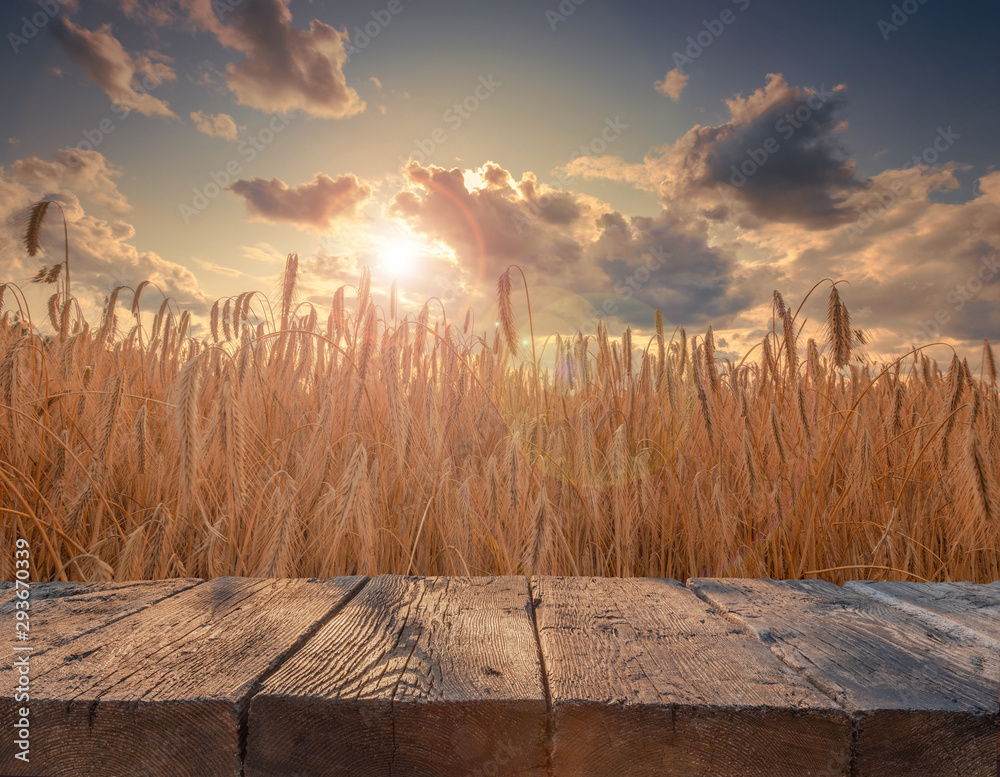 Fototapety, obrazy: Rustic textured wooden board table in front of summer beautiful rye field in sunset light. Ready for product placement template.