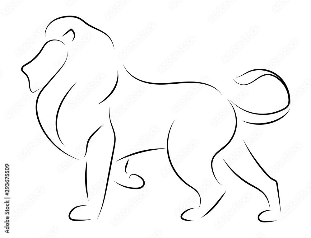 Fototapeta Black line lion on white background