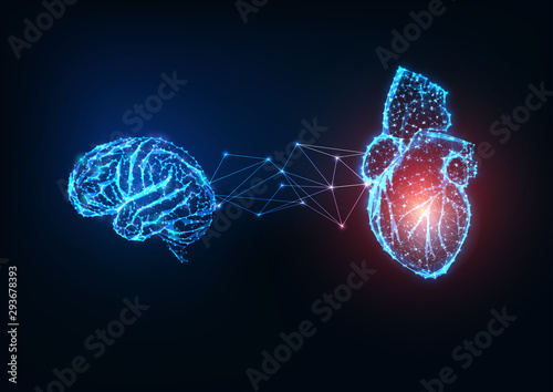 Obraz Futuristic glowing low polygonal connected human organs brain and heart on dark blue background. - fototapety do salonu