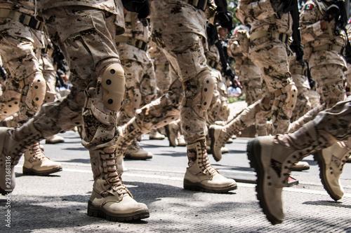 Fototapeta Desfile 16 de septiembre