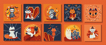 Bundle Of Scenes With Cat Disguised Characters