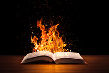 Holy Bible On Fire On A Wooded...