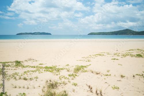 Fényképezés Sandy beach from eyes level at the edge of the grassy dunes