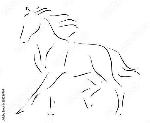 Black line horse Canvas-taulu