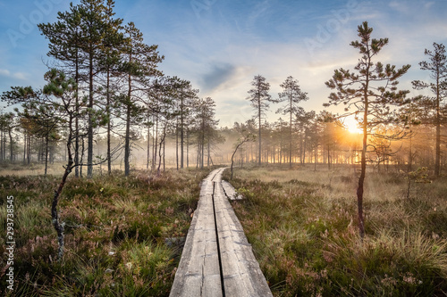 Scenic view from swamp with wooden path and beuatiful sunrise at autumn morning Fototapeta