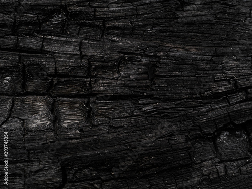 Garden Poster Firewood texture The Surface of charcoal background.