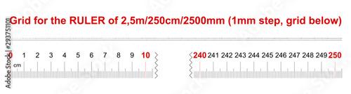 Tela  Ruler of 2500 millimeters