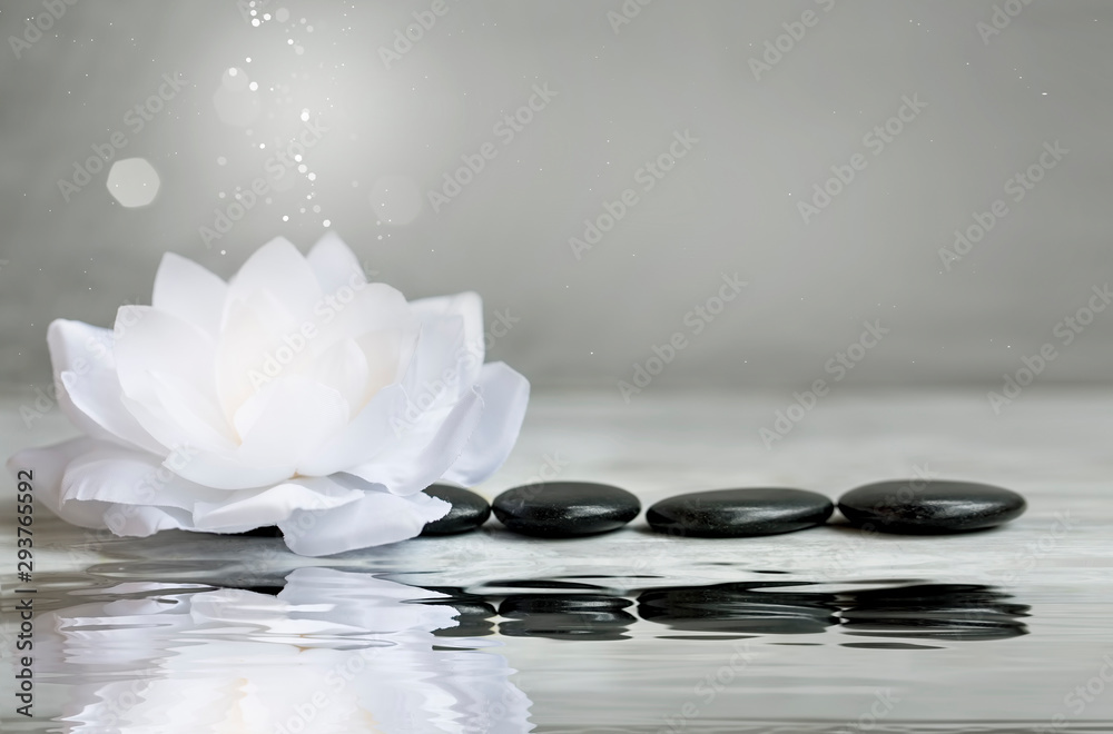 Fototapeta Spa still life with water lily and massage stones