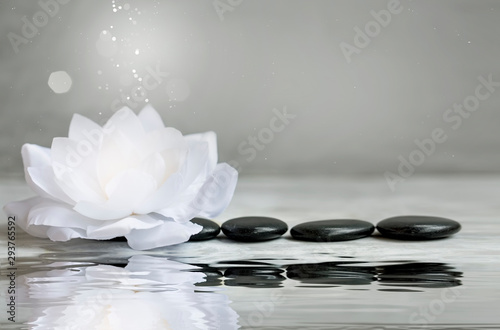 La pose en embrasure Nénuphars Spa still life with water lily and massage stones