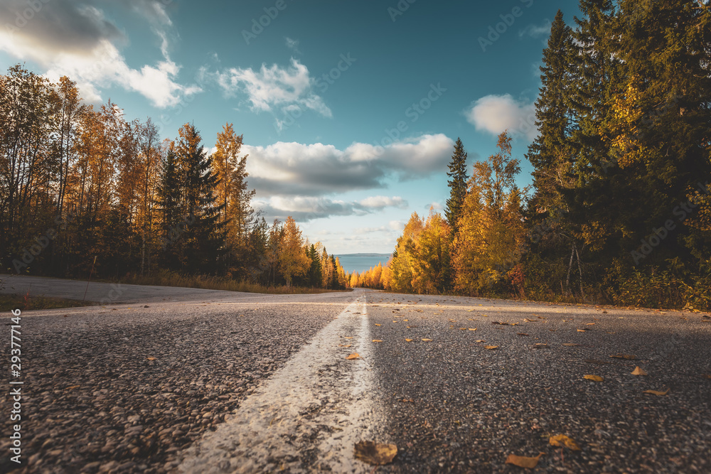 Fototapety, obrazy: Autumn road view from Sotkamo, Finland.
