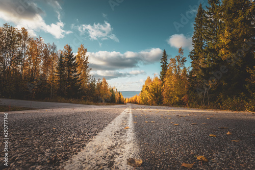 Tuinposter Herfst Autumn road view from Sotkamo, Finland.