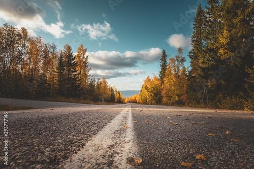 Spoed Foto op Canvas Herfst Autumn road view from Sotkamo, Finland.