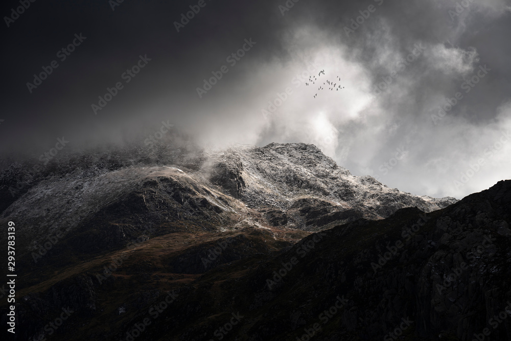Fototapeta Stunning moody dramatic Winter landscape image of snowcapped Tryfan mountain in Snowdonia with stormy weather brooding overhead with birds flying high above