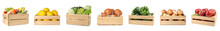 Set Of Wooden Crates With Frui...