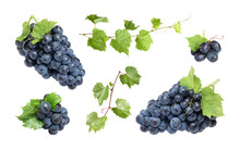 Set Of Fresh Juicy Grapes And Leaves On White Background