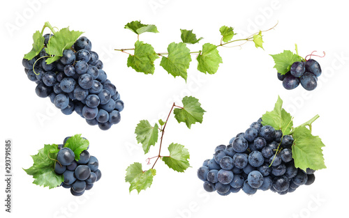 Set of fresh juicy grapes and leaves on white background Wallpaper Mural