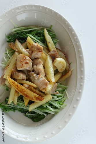Chinese food, potato and chicken stir fried Canvas Print