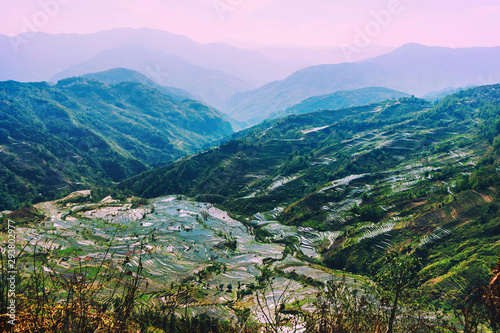 Foto auf Gartenposter Reisfelder Terraced rice fields of YuanYang , China in the morning