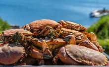 Cooked Brown Crabs On A Tray R...