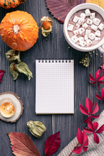 Autumn Fall Holiday Background With Pumpkin Leaves Cocoa Cup Blank Empty Paper Notebook Notepad On Brown Wooden Table Desk, Happy Halloween Thanksgiving Mock Up, Above Top Vertical Overhead View