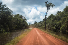 Road In The Tropical Forest. B...