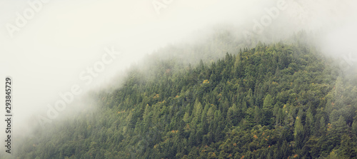 Poster Kaki Mist over forested mountain slope. Dense low lying clouds rolling over mountain range. Early autumn scene